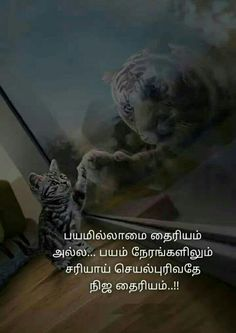 Tamil Motivational Quotes, Tamil Love Quotes, Inspirational Quotes, Stories With Moral Lessons, Moral Stories, Bahubali Movie, Golden Quotes, Swami Vivekananda Quotes, Best Quotes
