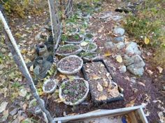 Winter care for hypertufa pots consists of putting them off to the side of the traveled path, and let nature take care of them with a covering of snow.  They emerge from the winters grip looking better than ever, ready for a new season of breathtaking beauty.