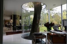 Innovative methods of incorporating nature and buildings. This way the tree can grow uninhibited while the structure remains dry and warm plus its low maintenance!