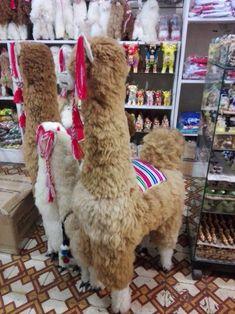 Large white stuffy alpaca | Alpaca Fur Stuffed Animal 39 Alpaca Toy, Suri Alpaca, Baby Alpaca, Large Stuffed Animals, Alpaca Stuffed Animal, Handmade Soft Toys, Large White, Guinea Pigs