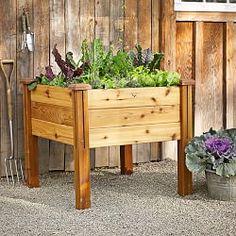 Planters, Raised Planting Beds & Planter Boxes | Williams-Sonoma