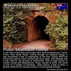 Picton 'Mushroom' Tunnel - Picton, New South Wales, Australia  - 'World of the Paranormal' are short bite sized posts covering paranormal locations, events, personalities and objects from all across the globe. For more information on all things paranormal, strange, dark and macabre visit The Paranormal Guide: www.theparanormalguide.com