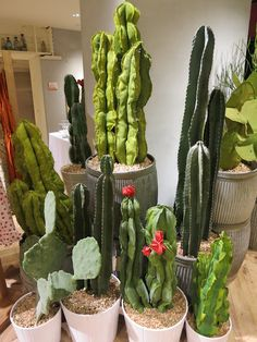 These fabric cacti were so much fun to make w/ Erin, an awesome display coordinator from our Boston store.