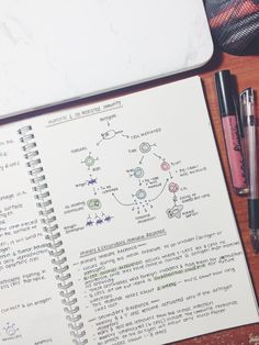 joo-ah-lee: Notes on the immune system ⛑                                                                                                                                                                                 More
