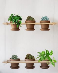 Hey, I found this really awesome Etsy listing at https://www.etsy.com/listing/180560485/hanging-planter-garden-6-pots-2-rows