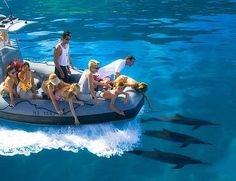 Kauai Rafting – Na Pali Raft tours. Accommodates 14 people at a time. Great for a group outing!