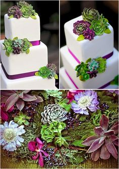 This cake does the impossible by combining my two great loves in life--succulents and cake!!
