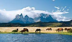 PRODUCTO: Torres del Paine es un parque nacional en Chile y es un lugar natural muy prístino. El parque tiene un rastro donde puedes ver vistas espectaculares de la cordillera de Andes. PERSPECTIVO: Torres del Paine es importante a la industria turística en Chile porque es muy popular con mochileros internacionales. Esta tierra es un símbolo del país también.