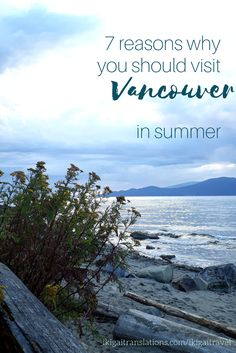 7 reasons why you should visit Vancouver in summer