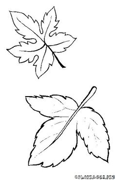 Find a coloring book with more than 12000 cartoon characters coloring pages! Let your children to express their imagination when they start coloring. Leaf Coloring Page, Coloring Pages For Kids, Coloring Books, Dame Nature, How To Clean Suede, Wood Burning Patterns, Nature Tree, Tree Leaves, Stained Glass Patterns