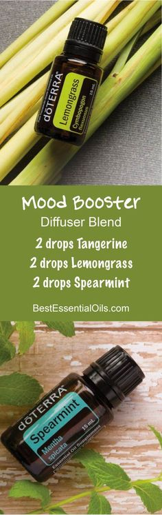 An easy to make Mood Booster doTERRA Diffuser Blend
