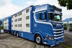Scania V8, Truck Paint, Show Trucks, Car Wrap, Cool Paintings, Classic Trucks, Techno, Vehicles, Livestock