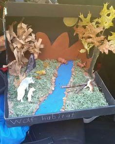 Chris' wolf habitat diorama