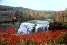 Letchworth, the 'Grand Canyon of the East, is considered one of the most scenic areas in the Eastern USA.
