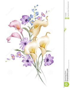 watercolor-illustration-flower-set-simple-white-background-51532026.jpg (1043×1300)