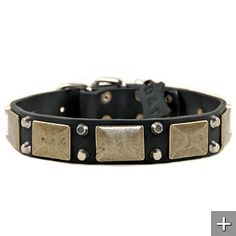 Cool!  An antique dog collar!