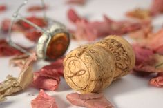 Learn about the history of exploding bottles, fermentation, the use of corks and cages and the chalk caves of Reims - Pure Wander Magazine Champagne Lanson, Champagne Corks, Wedding Thank You Cards, Wedding Favours, Travel With Kids, Our Wedding, Bubbles, Place Card Holders, Pure Products