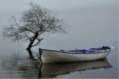 """SERENITY""  (fog&lake)"