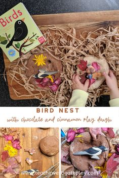 This play dough birds nest is a simple activity to help little ones learn about the world around them. Letting them help make the play dough is great for a number of reasons, check out the website for more info.