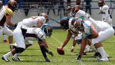 FOTOS HECTOR FLORES MENDOZA. SI DESEAS VISITAR EL RESTO DE ESTA GALERIA, DIRIGETE A LAS SIGUIENTES DIRECCIONES: www.zonaneutral.mx   http://www.zonaneutral.mx/galerias.php