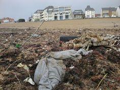 Saint Gilles Croix de Vie plages polluées par le plastique