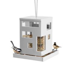 bird cafe feeder