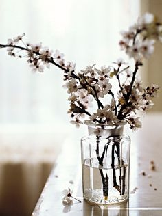 Love to do this with the current blooming branches.  For some reason it makes me feel so happy.