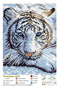 Cross-stitch White Tiger...    Gallery.ru / Фото #1 - 616 - Milka35