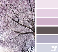 { color nature } - https://www.design-seeds.com/seasons/spring/color-nature-26