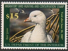 Federal Duck Stamp RW73 2006-07 Ross' Goose - TR Duck Stamps, Etc.