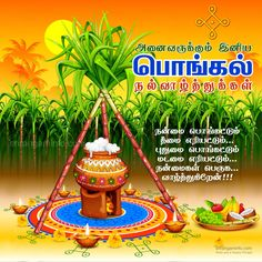 Pongal greetings in tamil Pot infront of the sun Happy Pongal In Tamil, Pongal Wishes In Tamil, Happy Pongal Wishes, Tamil Greetings, Pongal Festival Images, Pongal Images, Diwali Images, Pongal Greeting Cards, Thai Pongal