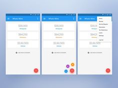 Whats Mine –Assets Management App – User interface by Ali Sayed