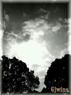 Sunday morning sky — #sunshine #andrography #sky #clouds #photography #streamzoo #sundaymorning #nature #blackandwhite #trees • MyajaTani on Streamzoo