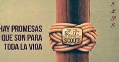 Una vez Scout siempre Scout