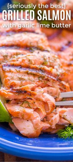 Grilled Salmon with garlic lime butter is the BEST grilled salmon recipe you'll ever try! The crisp and flaky texture mixed with the garlic lime butter is simply irresistible. The garlic lime butter[. Fish Recipes Healthy Tilapia, Best Fish Recipes, Grilled Salmon Recipes, Baked Salmon, Seafood Recipes, Healthy Recipes, Baked Fish, Best Salmon Recipe, Lime Recipes