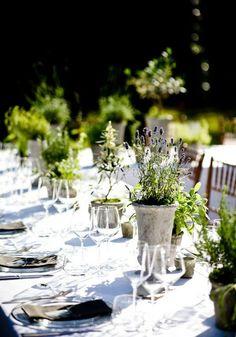 Fresh, simple table arrangement! Love it!