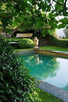 Pool surrounded by greenery.