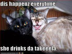 Drunk beeotch