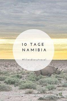 10 days Namibia round trip through the wilderness - 10 days round trip through beautiful Namibia! Africa Destinations, Holiday Destinations, Travel Destinations, Vacations To Go, Vacation Trips, Places To Travel, Places To Go, Yoga Holidays, Koh Tao