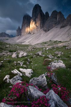 It's Landscape Silenzio