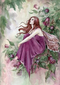 Belladonna by JannaFairyArt on DeviantArt * Fairy Myth Mythical Mystical Legend Elf Faerie Fae Wings Fantasy Elves Faries Sprite Nymph Pixie Faeries Hadas Enchantment Forest Whimsical Whimsy Mischievous Fairy Dust, Fairy Land, Fairy Tales, Magical Creatures, Fantasy Creatures, Fantasy Kunst, Fantasy Art, Fantasy Fairies, Elves And Fairies