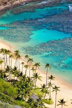 Hanauma Bay, Oahu, Hawaii - Fun times snorkeling here with good friends, family, parents and my husband! Hawaii Vacation, Hawaii Travel, Dream Vacations, Vacation Spots, Maldives Travel, Beach Vacations, Beach Hotels, Mexico Travel, Spain Travel