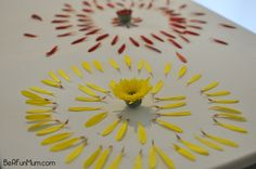 Nature Crafts: Deconstructing Flowers