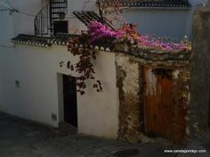 Discover the Lecrin Valley Village of Chite. One of the seventeen Lecrín Valley villages, Chite forms part of the municipality of Lecrín and is a charming village spread over two barrios