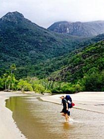 Hinchinbrook Island National Park  Hinchinbrook  Queensland 4850 Australia