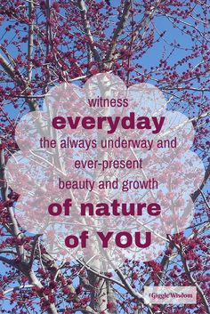 Witness, everyday, the always underway and ever-present beauty and growth of nature, of YOU!