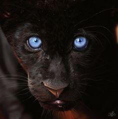 Black Panther. by *erchivita