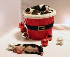 Christmas bucketful of Boston Terrier puppies