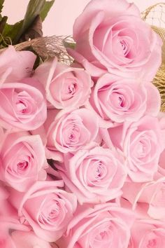 You Know You're A Girly-Girl If. Things that almost every girly girl understands things Beautiful Roses, Pink Flowers, Beautiful Flowers, Color Rosa, Pink Color, Pink Love, Pretty In Pink, Cute Pink, Rich Girls