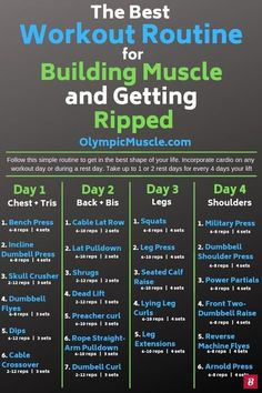 Supplements to Get Ripped in 4 Weeks Check out this great 4 day workout routine for building muscle and getting ripped!Check out this great 4 day workout routine for building muscle and getting ripped! 4 Day Workout Routine, Full Body Workout Routine, Gym Workout Tips, Fun Workouts, Weekly Workout Routines, Gym Workouts For Men, Gym Workouts Schedule, Gym Workout Plans, Mens Fitness Workouts